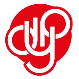 DYP coin crypto